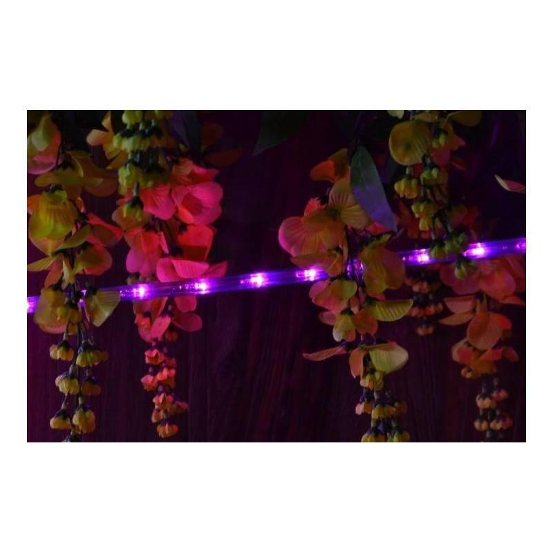 cordon led rose 30m tube plastique