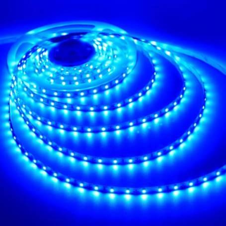Ruban LED bleu extérieur 5M professionnel