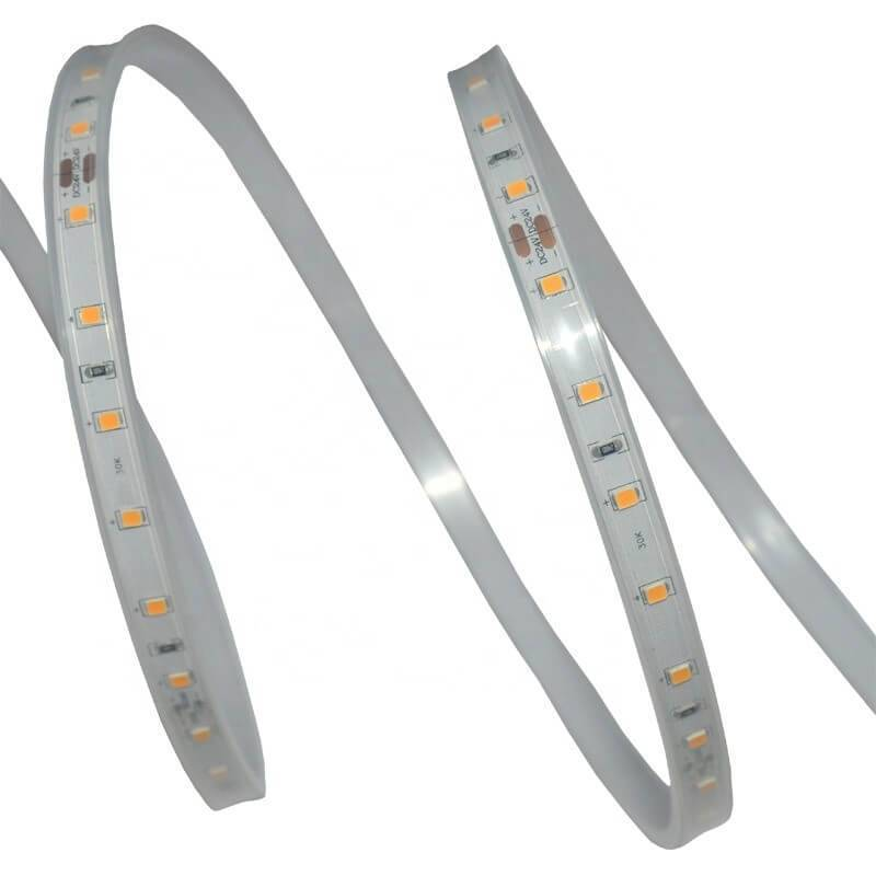 Ruban LED blanc froid extérieur 5M IP65 professionnel professionnel
