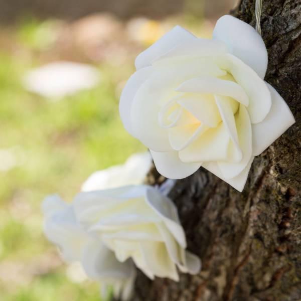 Guirlande led roses decorative 1.35m à piles blanc chaud décoration cérémonie laïque mariage