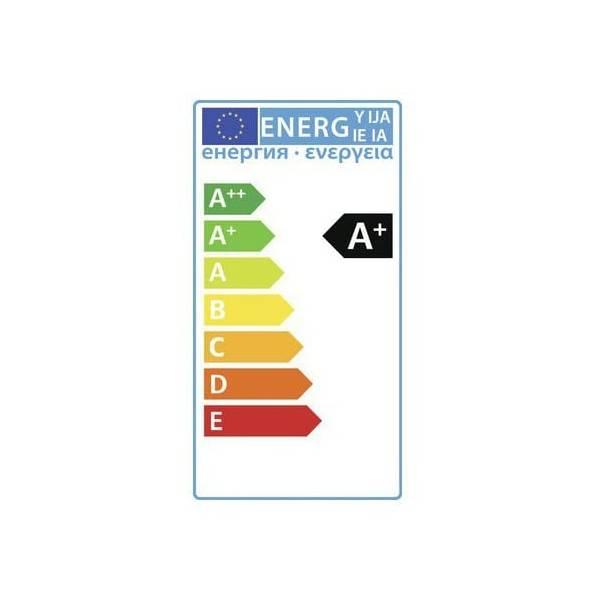 Applique murale connectée intelligente extérieure noire LED 5W RGB + blanc 12V Garden Pro classe A+ énergie basse tension