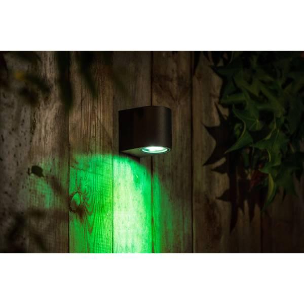 Applique murale connectée intelligente extérieure noire LED 5W RGB + blanc 12V Garden Pro