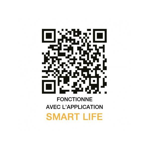 Ampoule LED connectée WIFI dimmable RGB+Blanc CCT 2700K-6500K E27 9W Vision Pro application smart life smartphone tablette